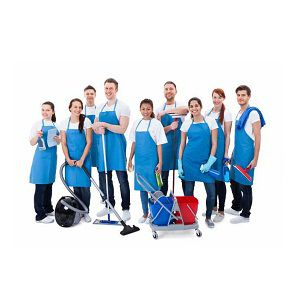 cleaning and pest control service