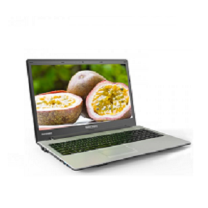 Walton Passion Laptop WP156U5S