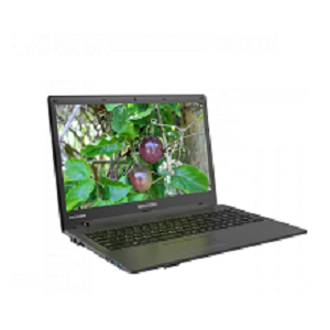 Walton Passion Laptop  WP156U7G