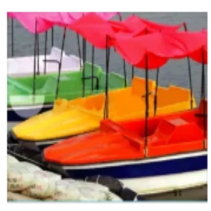 FRP Paddle Boat Price BD | FRP Paddle Boat