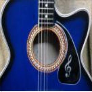 Topaz Guitar Price BD | Topaz Guitar
