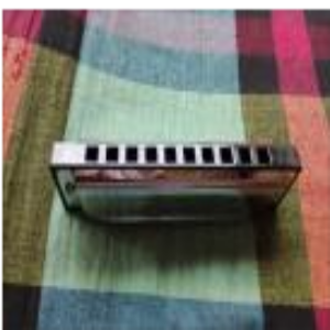 10 Holes Harmonica (Mouth Organ)