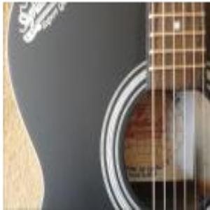 Indian Signature Guitar Price BD   Indian Signature Guitar