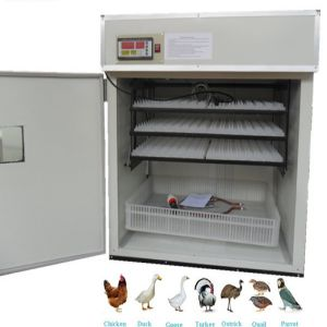 Egg Hatching Machine Price BD | Egg Hatching Machine