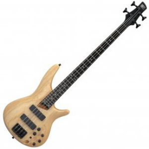 Bass Guitar Price BD | Bass Guitar