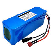 Lithium Ion Phosphate Battery